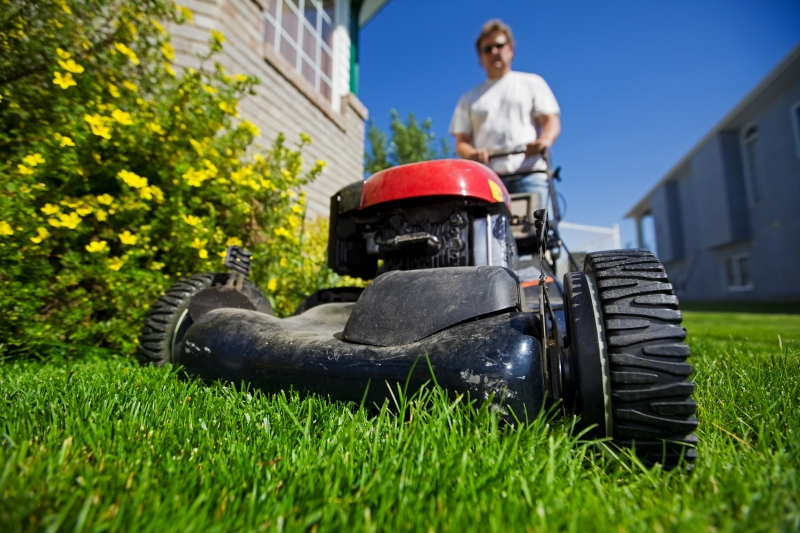 657581-mow-the-lawn